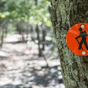 Budget-Friendly Tips You Need to Know When Going on a Hike