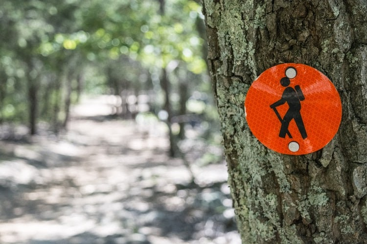 9 Budget-Friendly Tips You Need to Know When Going on a Hike